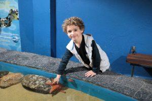 Interagindo com animais no aquário de Ubatuba